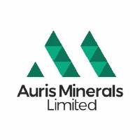 Auris Minerals Limited