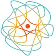 Paradigm Biopharmaceuticals Limited