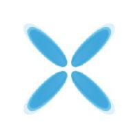 RareX Limited