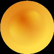Heat Biologics, Inc